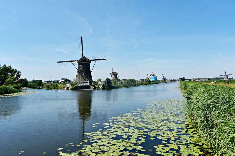 Traditional Dutch windmills at Kinderdijk, Holland. Beautiful landscape with green grass and traditional Dutch windmills on the shore of a river in Kinderdijk royalty free stock photos