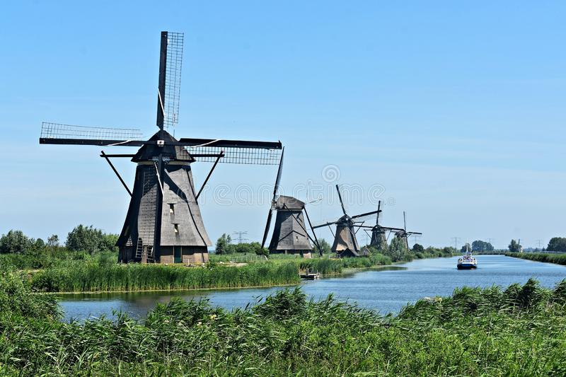 Traditional Dutch windmills at Kinderdijk, Holland. Beautiful landscape with green grass and traditional Dutch windmills on the shore of a river in Kinderdijk royalty free stock images
