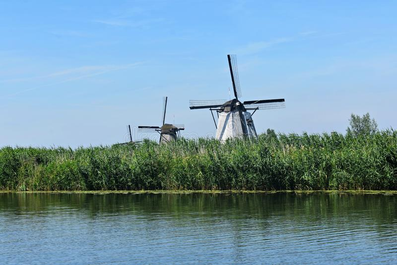 Traditional Dutch windmills at Kinderdijk, Holland. Beautiful landscape with green grass and traditional Dutch windmills on the shore of a river in Kinderdijk stock image