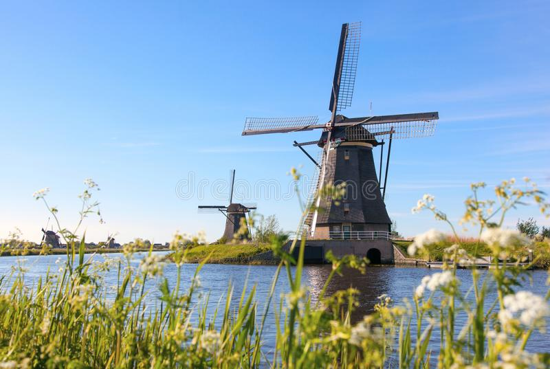 Traditional dutch windmills near the canal in Kinderdijk royalty free stock photo