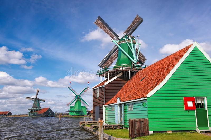 Traditional Dutch windmills with tulips in Zaanse Schans, Amsterdam area, Holland stock photo