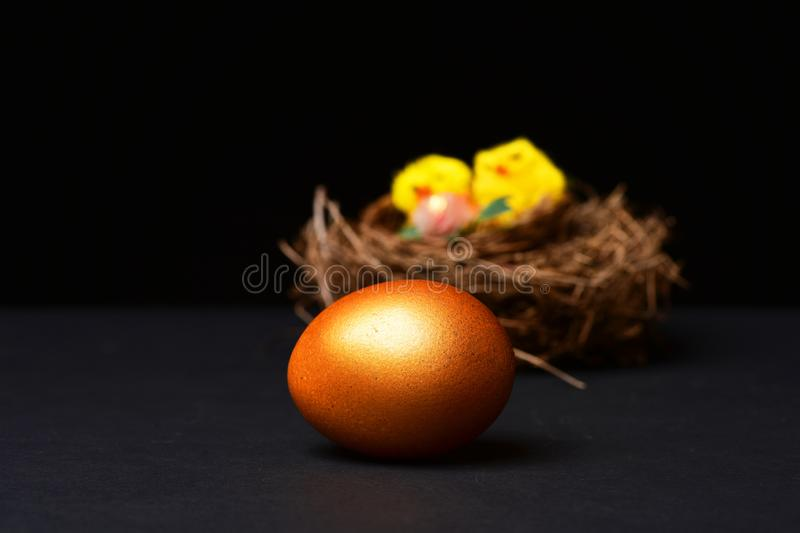 Traditional egg painted in golden color in selective focus with nest on black background. Happy Easter, farming and stock photos