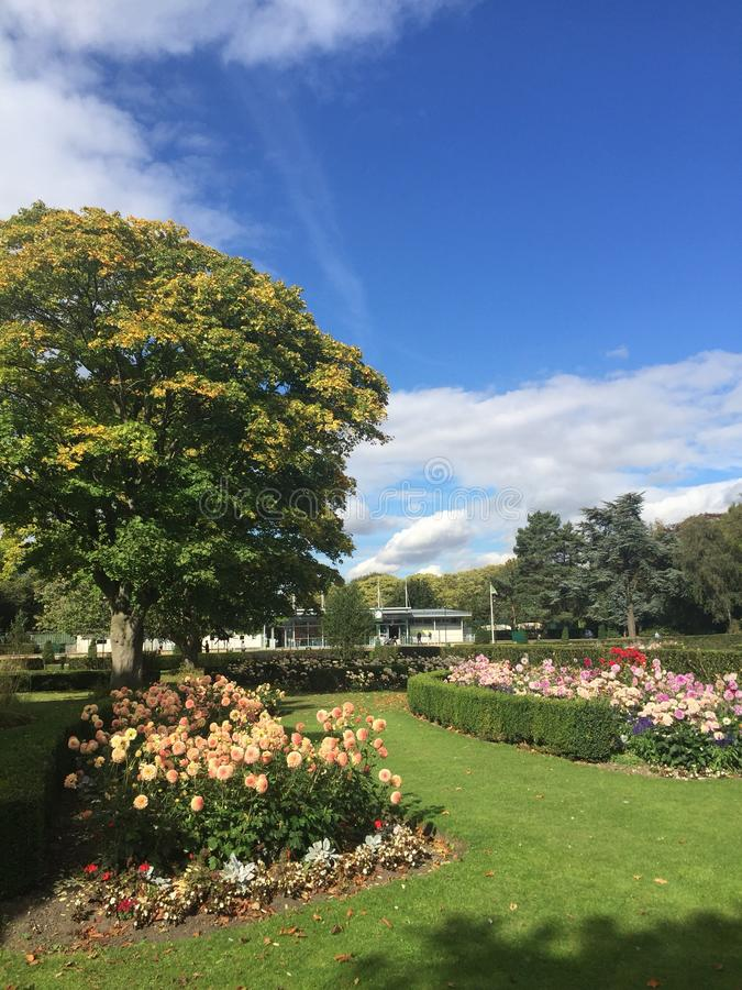 Colorful view of trees and flowers in East Park in Hull in September 2018. Traditional English park in Hull city with plenty of flowers. Ideal place to go out royalty free stock photography