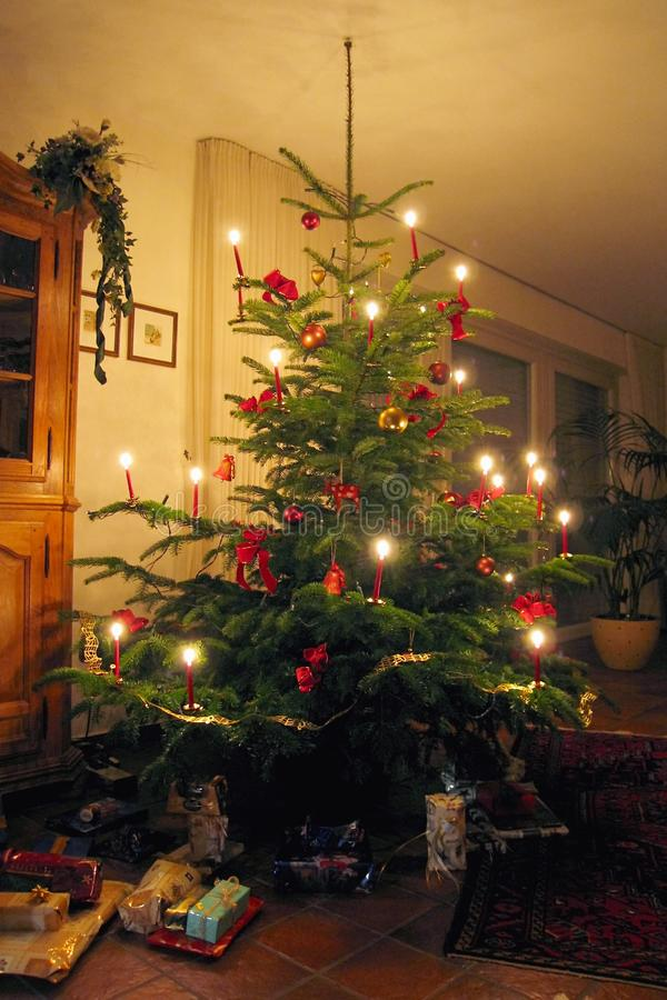 Traditional European Christmas Tree with Candles Burning and Presents. This is a traditional European Christmas tree with wider spacing of the branches to stock photo