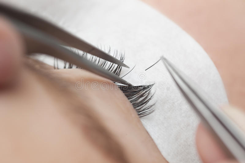 Traditional eyelash extensions. Selective focus. Toned. Makeup close-up. royalty free stock photo
