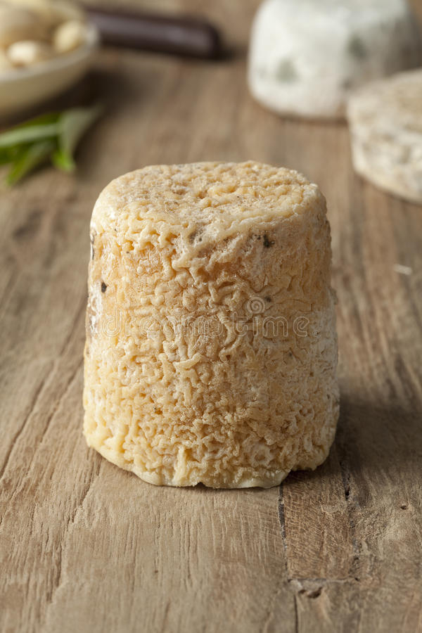 Traditional french goats cheese stock photography