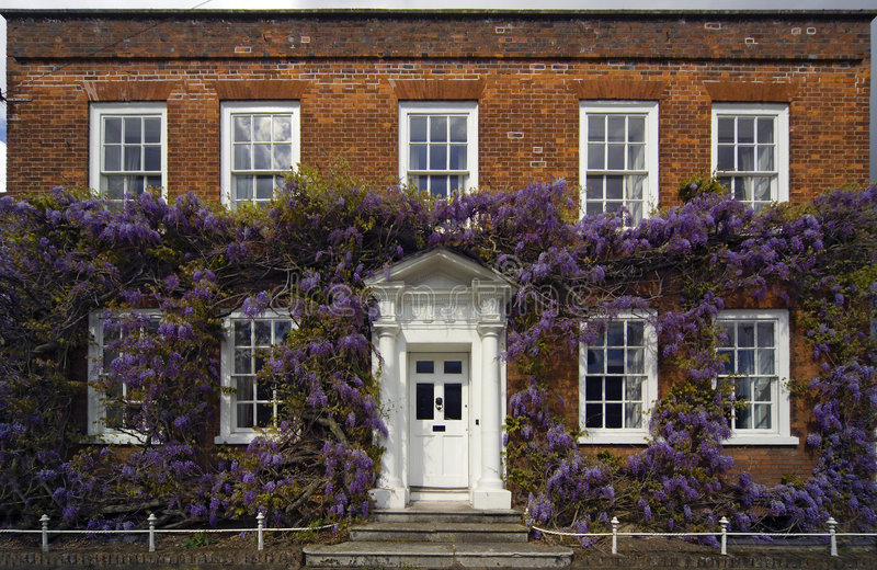 Traditional Georgian House with Wisteria stock images