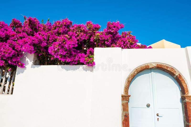 Traditional greek architecture and pink flowers royalty free stock photography
