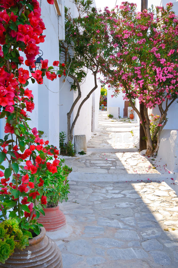 Download Traditional Greek Backstreet In Cyclades Islands, Stock Image - Image of culture, island: 25754627
