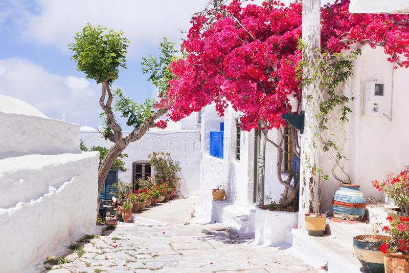 Traditional greek street with flowers in Amorgos island, Greece stock photo
