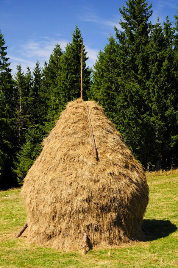 Free Traditional Hay Stack In Romania Stock Photo - 16158900