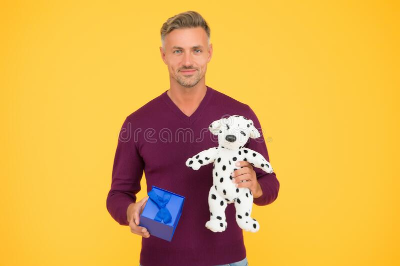 Traditional holidays. Nice gift. From sincere heart. Man celebrate valentines day. Romantic gift. Mature guy gift box. Yellow background. Vet shop. Man with dog royalty free stock photo