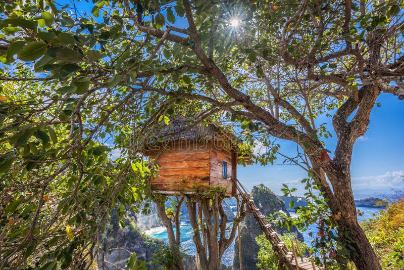 Traditional house on tree ,House on tree in Nusa Island,Bali,Indonesia.  stock images