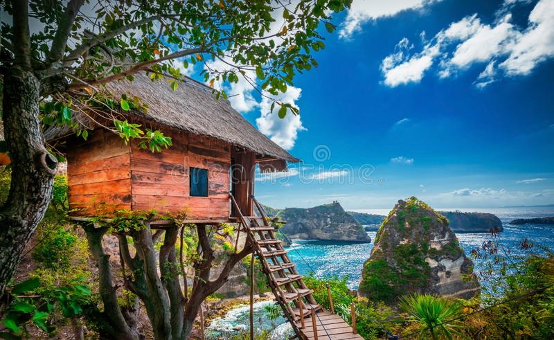 Traditional house on tree ,House on tree in Nusa Island,Bali,Indonesia.  stock image