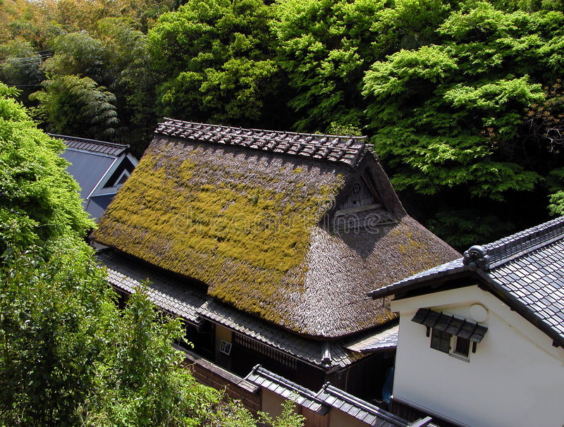 Download Traditional houses stock photo. Image of nature, architecture - 88380