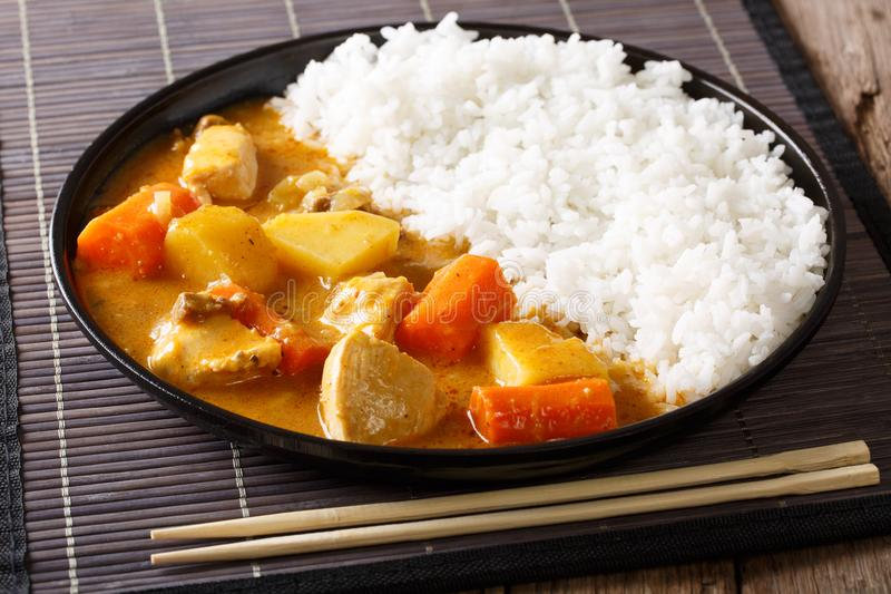 Traditional Japanese food: curry and rice close-up. horizontal. Traditional Japanese food: curry and rice close-up on a plate. horizontal royalty free stock image