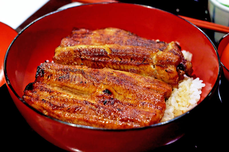 Traditional Japanese food, Unadon, unagi with boiled rice royalty free stock images