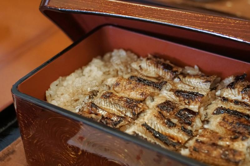 Traditional japanese grilled unagi eel on rice lunch box royalty free stock photography
