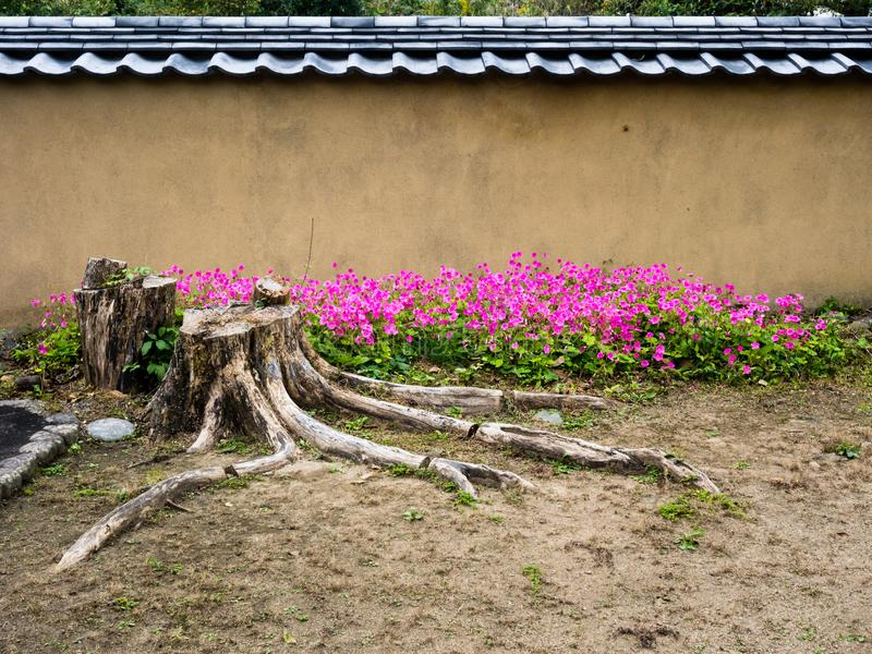 Traditional Japanese plaster wall and garden with flowers royalty free stock photography
