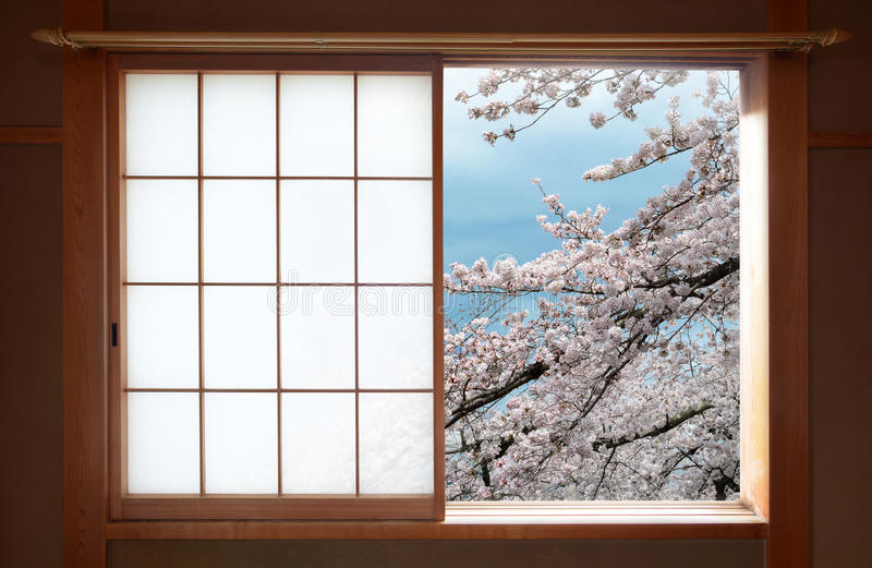 Traditional Japanese sliding window and beautiful cherry tree blossoms. Zen-like indoor setting of a traditional Japanese wood sliding window opened to a royalty free stock photos