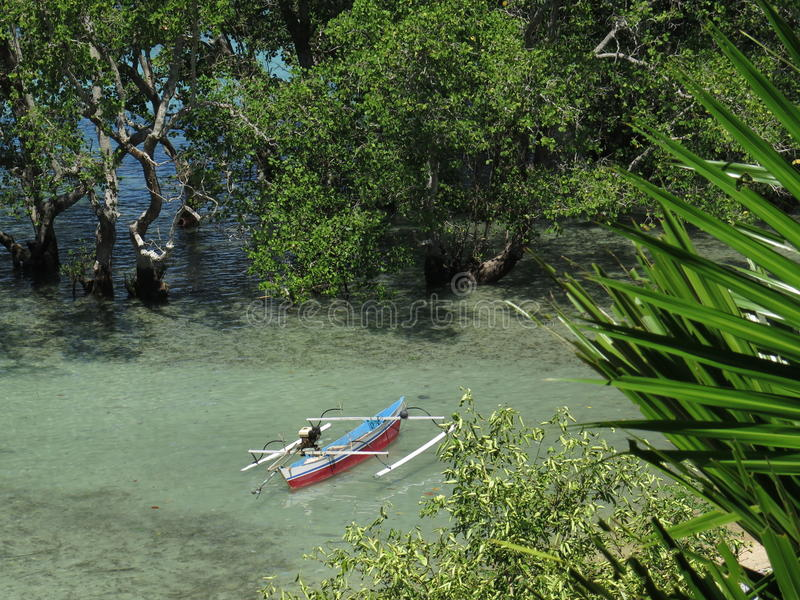 Traditional Jukung fishing boat in a mangrove at Bunaken Island, North-Sulawesi, Indonesia. Traditional Jukung fishing boat in shallow water surrounded by stock photography