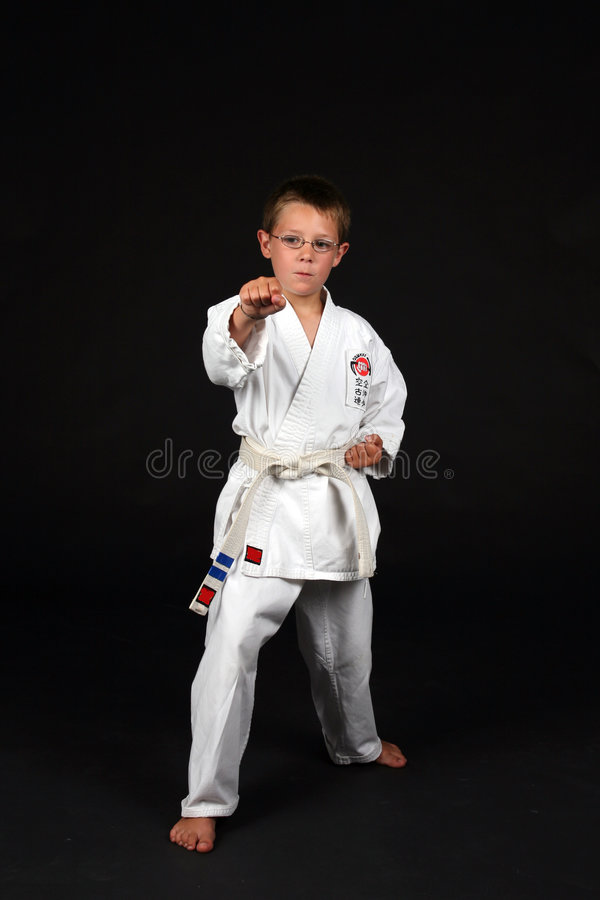 Free Traditional Karate Right Stance Royalty Free Stock Images - 6325429
