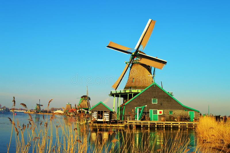 Traditional Landscape in Holland royalty free stock photo