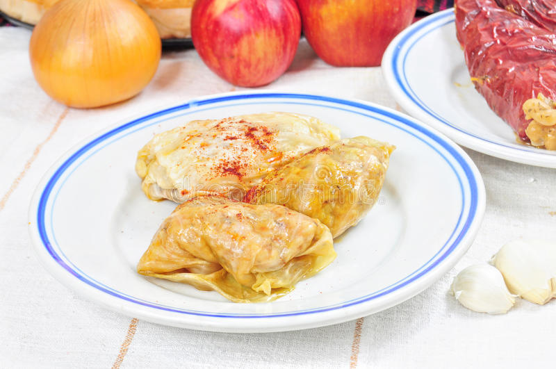 Traditional lenten fare from the Balkans - sarma. Traditional lenten dish from the Balkans - cabbage rolls with rise sarma royalty free stock photo