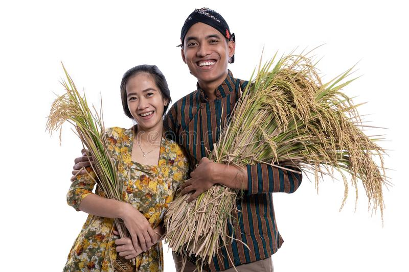 Traditional male and female asian farmer with rice paddy grain in hand smiling to camera stock photo