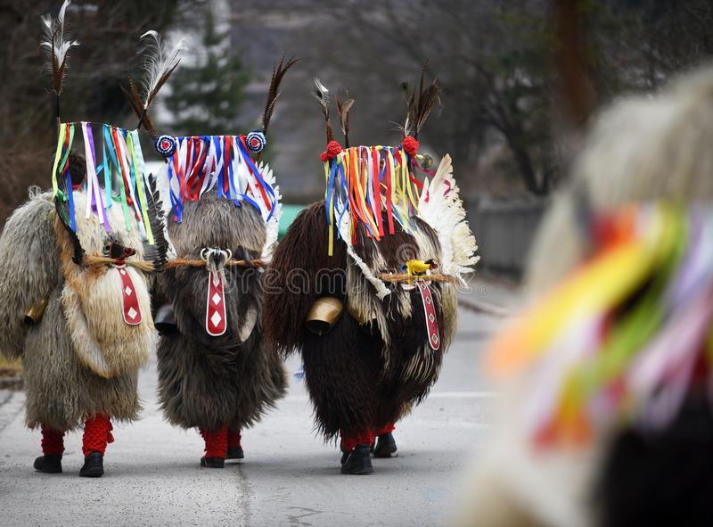 Traditional mardi gras costume from slovenia europe kurent stock download traditional mardi gras costume from slovenia europe kurent stock image image of m4hsunfo Images
