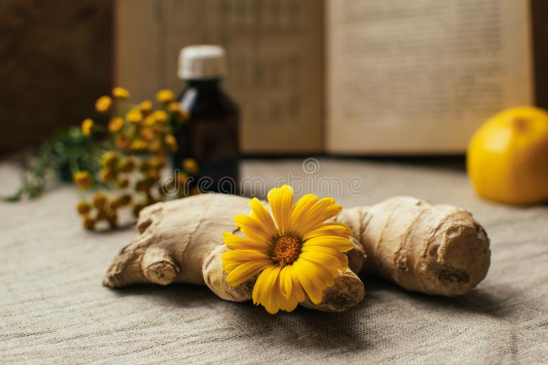 Traditional medicine background with ginger and calendula at blurred vintage recipy book, lemon,pharmacy bottle, tansy at linen stock photos