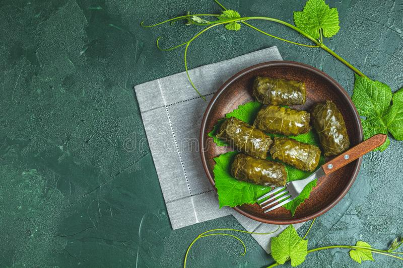 Traditional Middle Eastern dolma or tolma or sarma royalty free stock images