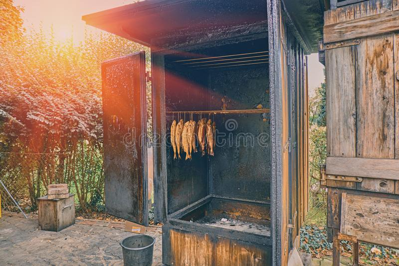Traditional norwegian salmon smoking process in the country restaurant in the mountains. Smoked salmon fish. In the wooden rural open fire place royalty free stock photo