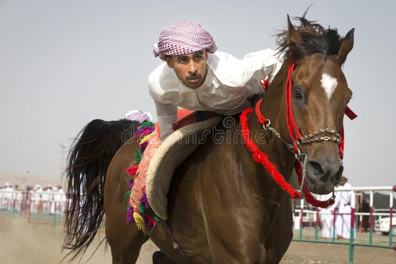 Traditional omani horse race royalty free stock images