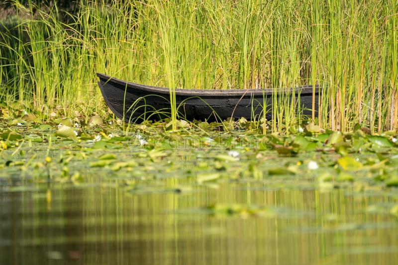 Traditional raft called Lotca the fishing boat of the fishermans in the Danube Delta (Delta Dunarii) Romania near Letea Village royalty free stock photography