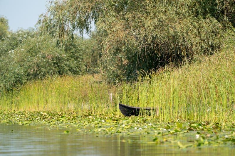 Traditional raft called Lotca the fishing boat of the fishermans in the Danube Delta (Delta Dunarii) Romania near Letea Village stock image
