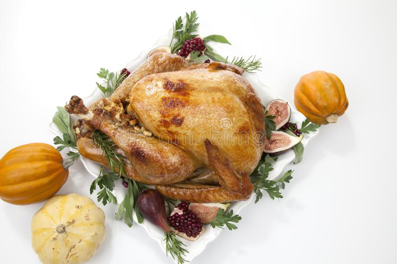 Traditional Roasted Turkey on White With Pumpkin. Garnished traditional roasted turkey for Thanksgiving, garnished with fresh figs, pomegranate, and herbs. On stock photography
