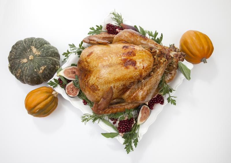 Traditional Roasted Turkey on White With Pumpkin stock image