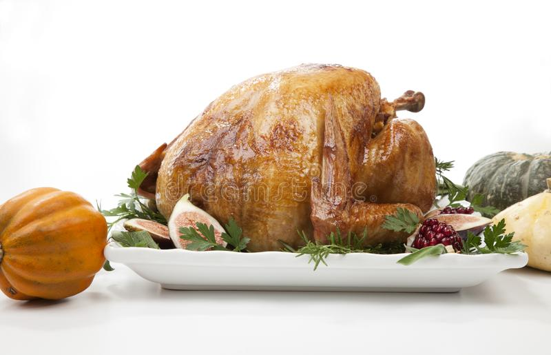 Traditional Roasted Turkey on White With Pumpkin royalty free stock photography