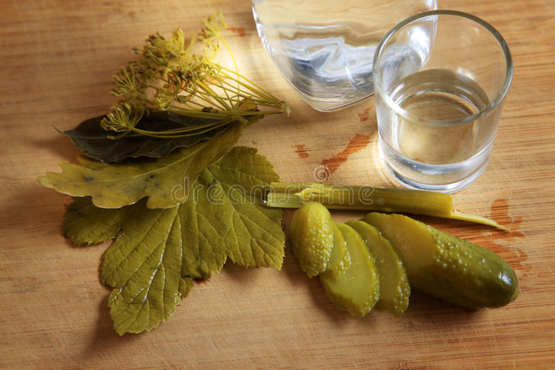 Traditional russian appetizer to vodka stock image