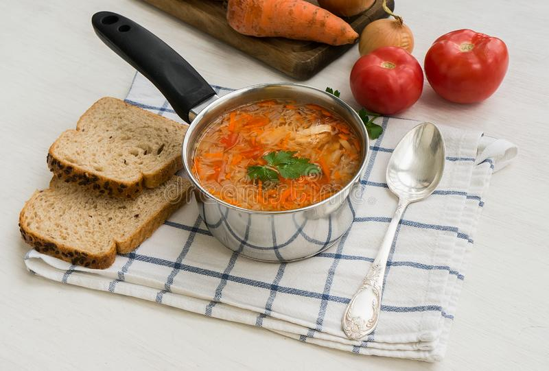 Traditional russian cabbage soup shchi in a ladle on a white background stock image