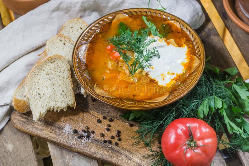 Traditional Russian sour cabbage soup shchi with sour cream and herbs on a wooden table with bread, pepper and parsley royalty free stock photo