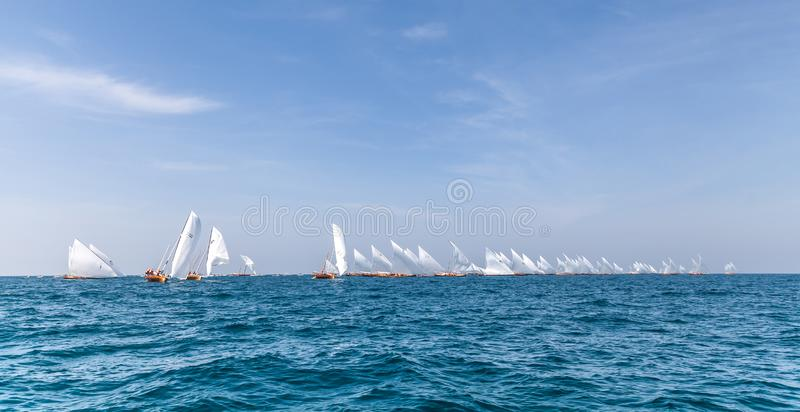 Traditional sailing dhows race back to Abu Dhabi at 60 Feet Dhow Sailing Race. royalty free stock photo