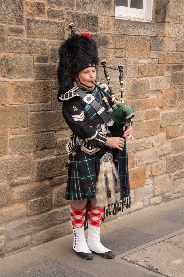 Traditional Scottish bagpiper wearing kilt stock image