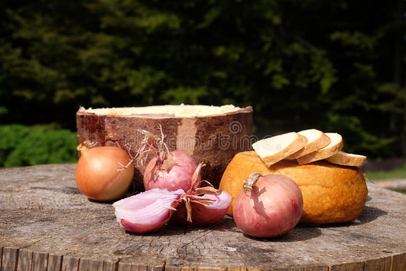 Traditional shepard food in eastern Europe with onions and cheese royalty free stock photo