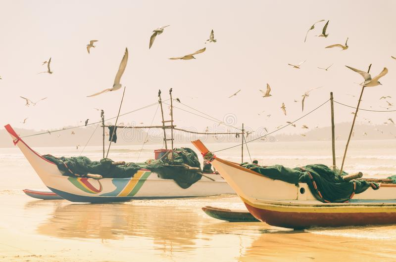 Traditional Sri Lankan fishing boats with nets for catching fish standing on sea shore, seagulls fly around them. stock photos