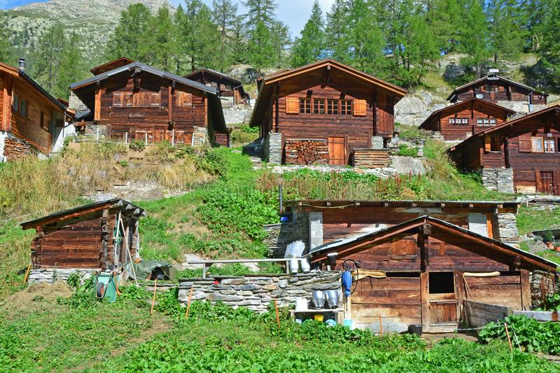 Traditional Swiss Mountain Chalets. In a mountain summer hamlet with small farm in the foreground stock photography