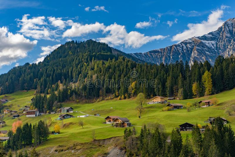 Traditional Swiss style houses on the green hills with forest in the Alps area of Switzerland, Europe royalty free stock photo