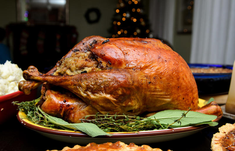 Traditional Thanksgiving turkey royalty free stock photography