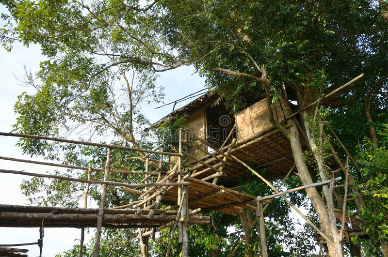 Traditional tree house royalty free stock photography